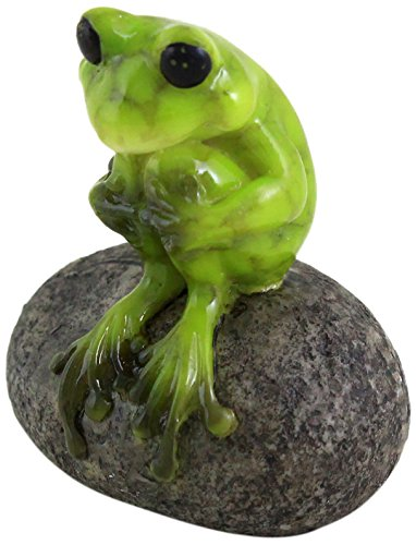 - Top Collection 1.75-Inch Miniature Fairy Garden and Terrarium Cute Frog on Stone, Mini
