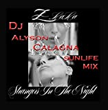 Strangers in the Night (DJ Alyson Calagna Sunlife Mix)