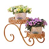 CSQ Iron Flower Stand, Plant Stand Shelf Small Living Room Bedroom Balcony Black Gold 2 Layer Potted Plant (Color : Gold, Size : 38.5cm)