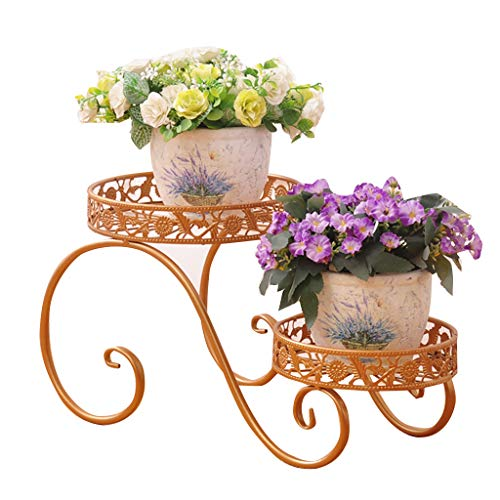 CSQ Iron Flower Stand, Plant Stand Shelf Small Living Room Bedroom Balcony Black Gold 2 Layer Potted Plant (Color : Gold, Size : 38.5cm) by Flowers and friends