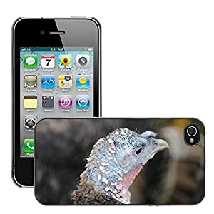 Just Phone Cases Slim Protector Hard Shell Cover Case // M00127336 Bird Turkey Head // Apple iPhone 4 4S 4G