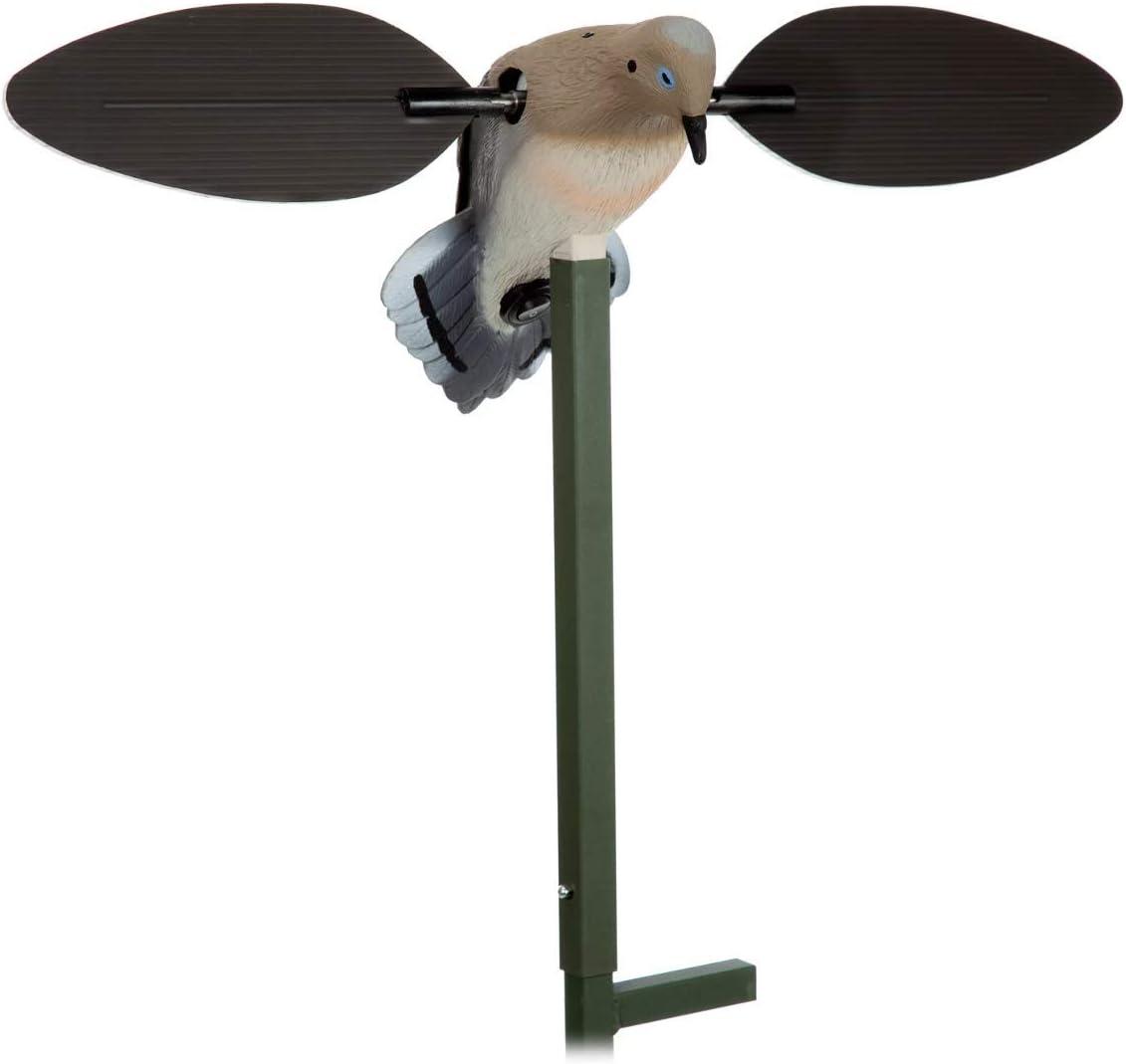 Amazon.com : Mojo Outdoors Voodoo Dove Decoy - Motion Dove Decoy ...