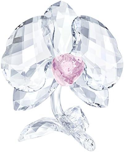 Swarovski Crystal Orchid Flower Figurine New 2018
