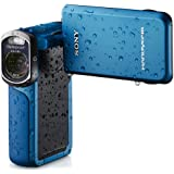 Sony HDR-GW77V/L High Definition Handycam 20.4 MP Camcorder with 10x Optical Zoom (Blue) (Discontinued by Manufacturer)