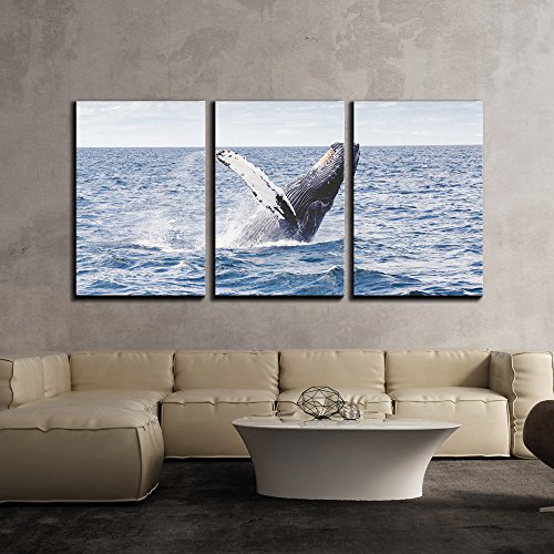 Jumping Whale x3 Panels