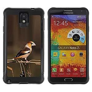 LASTONE PHONE CASE / Suave Silicona Caso Carcasa de Caucho Funda para Samsung Note 3 / brown branch berries yellow spring