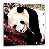 Cheap Wild animals – Panda Bear – 10×10 Wall Clock (dpp_515_1)