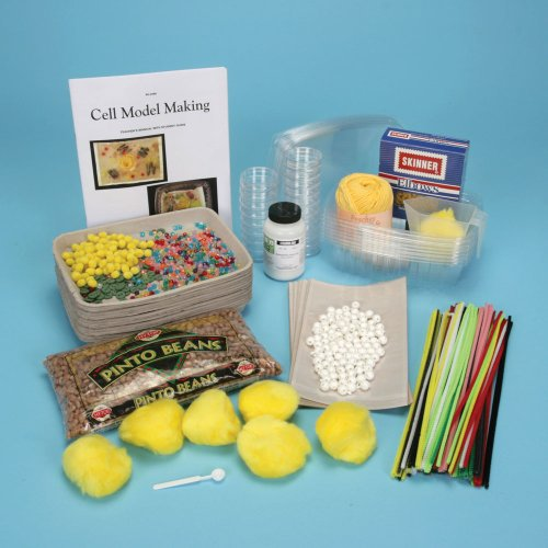 Cell Model-Making Kit (Animal Cell Model compare prices)