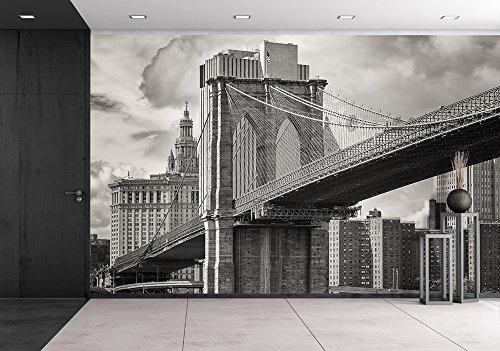 the Brooklyn Bridge and the Lower Manhattan Skyline in New York City