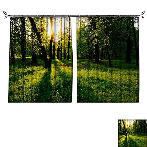 PRUNUS Colorful Waterproof Curtain with hookThe Sunlit Woods and Meadows Very Good Touch,W72 xL63