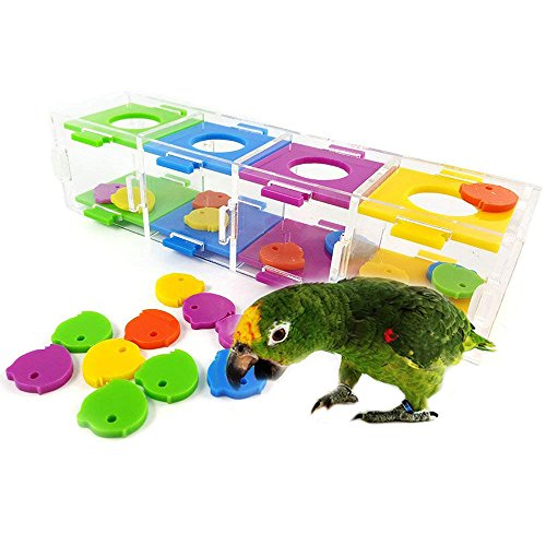 ASOCEA Parrot Bird Intelligence Training Toys with Color Separation Coin Box for Parakeet Macaw African Greys Eclectus -