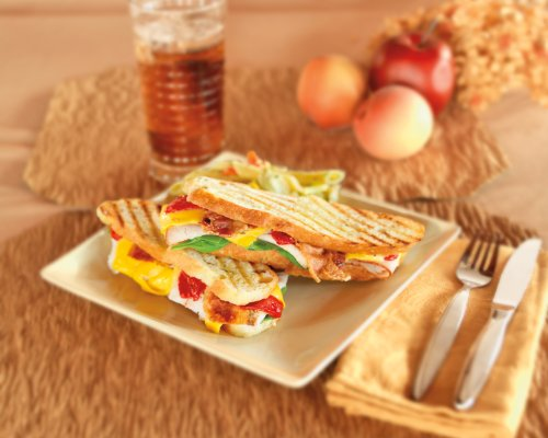 Hamilton Beach 25460 Panini Press Gourmet Sandwich Maker (Discontinued)