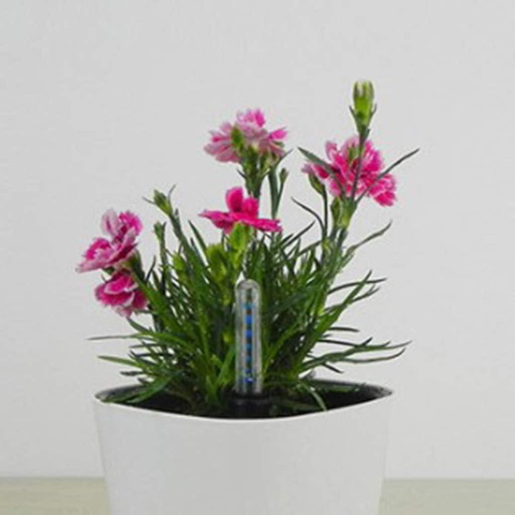 Fenteer 2X Testeur dHumidit/é Plantes Indicateur 34cm//17.5cm