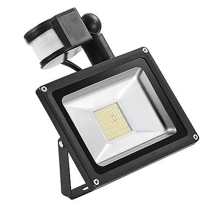 Allowevt Proyector LED de 30W Lámpara de exterior SMD blanca fría ...