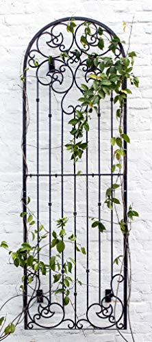 - H Potter Outdoor Metal Wall Art or Trellis for Climbing Plants Art Garden Panel Roses Vines Privacy Includes Brackets for Hanging (X-Large W/Wall Brackets)