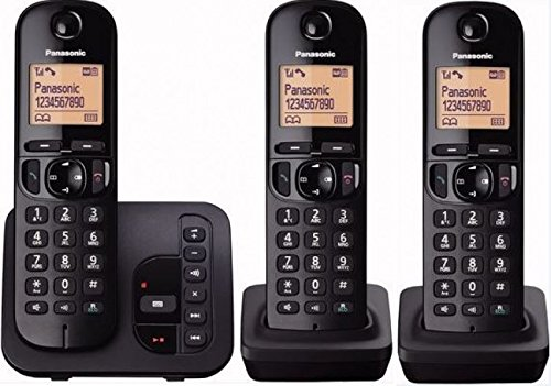 Panasonic KX-TGC223GB Tel/éfono Tel/éfono DECT, Altavoz, 50 entradas, Negro, Plata
