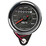 Iztor Motorcycles Modified Instrument Retro LED lights Dual Odometer Speedometer(0-180 km/h)
