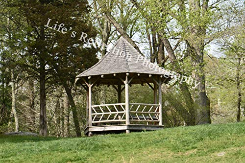 Connecticut Arboretum, Gazebo Photo, Nature Photography, Home Decor, Fine Art, Urban Photography, Handmade,