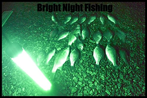 Bright Night Fishing Under Water Light Green Led 15000 Lumens Night Fishing 300 LED Green Priority Shipping Submersible Salt fresh water dock light boat crappie 12v dc (optional 110v ac) BR:15000 by Bright Night Fishing (Image #3)