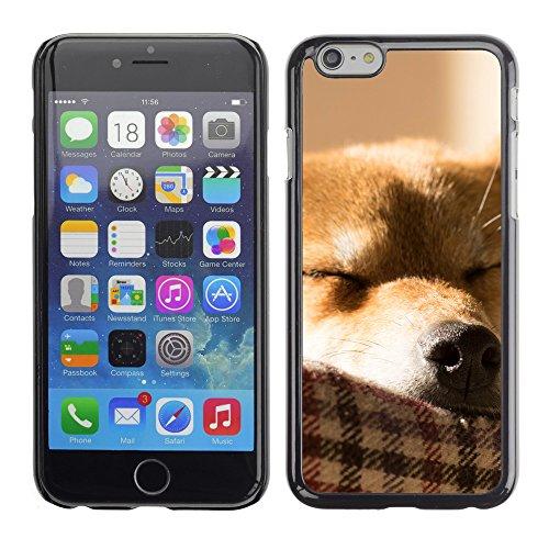 """Premio Sottile Slim Cassa Custodia Case Cover Shell // F00014016 chien // Apple iPhone 6 6S 6G 4.7"""""""