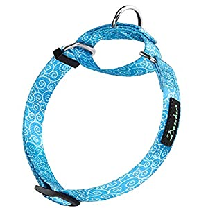 Dazzber Martingale Dog Collar – Geometric Pattern (Sky Blue, 2.5cm, Large) Click on image for further info.