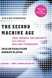 Book cover for The Second Machine Age: Work, Progress, and Prosperity in a Time of Brilliant Technologies