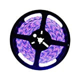 Deep Dream Blacklight UV LED Strip 16.4ft Waterproof Black Light 5M 3528 SMD 300LEDs