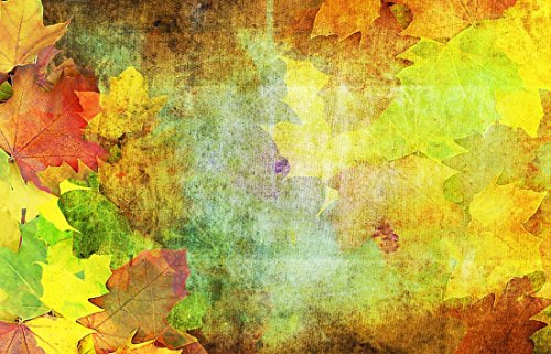 Laminated Poster: Autumn Background Emerge October Leaves Maple Beech Nature Of Course Color Golden