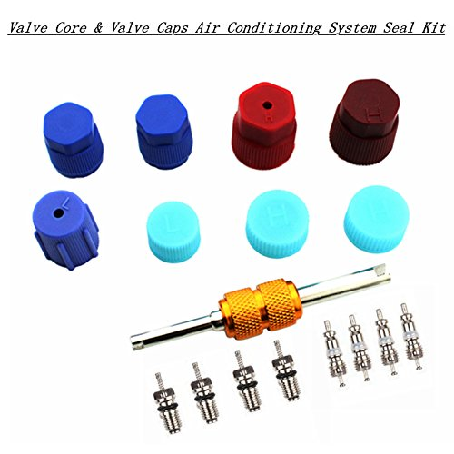 Air Conditioning Valve Core Kit | Car & Home AC R12 R134a Teflon Seal Refrigeration Schrader Valve Core with Valve Stem Core Rmover Tool Air Conditioning System Seal Caps Kit by Z&D Valve (Image #5)