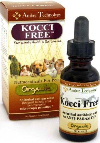 Kocci Free - All-Natural Anti-Parasitic for Pets (4 oz) by Amber Technology by Amber Technology