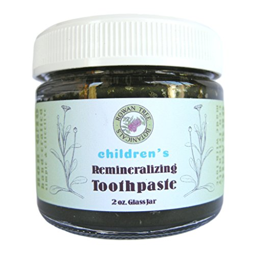 Echinacea Herbal Toothpaste (RTB's ORGANIC Children's Remineralizing Toothpaste: Mild Sweet Orange Herbal Formula for Kids ages 2+ (Organic, Natural & Homeopathic) (2oz in Glass Jar))