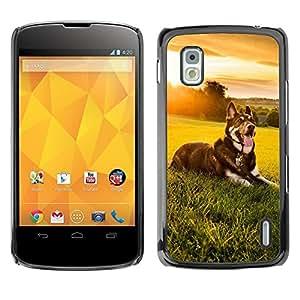 Caucho caso de Shell duro de la cubierta de accesorios de protección BY RAYDREAMMM - LG Google Nexus 4 E960 - Sunset Meadow Summer Happy Dog