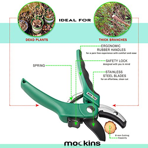 Buy pruning shears for roses