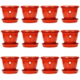 Kriti Kalash Planter Pot with Bottom Plate/Tray (8 inch, Red) - Pack of 12 Pots