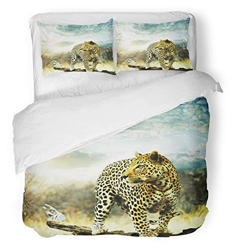 African Safari Bedding - Emvency 3 Piece Duvet Cover Set Breathable Brushed Microfiber Fabric Africa Leopard Safari Namibia African Cat South Spot Wild Bedding with 2 Pillow Covers Full/Queen Size