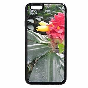 iPhone 6S Plus Case, iPhone 6 Plus Case, Conservatory of flowers in Edmonton 29