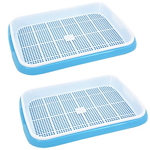 Seed Sprouter, RuiyiF 2 Sets Seed Trays for Planting Germination Free-Soil Double Layers, Blue + White by RuiyiF