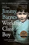 #9: Working Class Boy: The Number 1 Bestselling Memoir