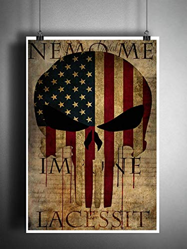 Punisher skull American flag over bill of rights, Military artwork, Patriotic decor, Nemo me impune lacessit