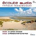 Écoute audio - Bienvenue dans le Nord ! 11/16: Französisch lernen Audio - Willkommen im Norden! Hörbuch von  div. Gesprochen von:  div.