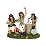 Department 56 Accessories for Villages Halloween Bone Jovi Figurine