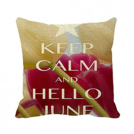 July Pillowcase Keep Calm And Hello June Pillow Cover 18Inch