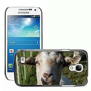 Super Stellar Slim PC Hard Case Cover Skin Armor Shell Protection // M00125452 Goat Animal Allg??u Meadow // Samsung Galaxy S4 Mini i9190