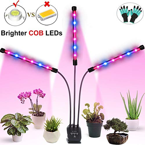 Grow Light Auto ONf