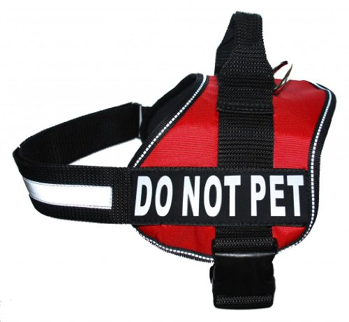 caution dog harness - 9