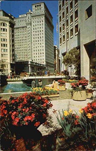 A Garden In Downtown San Francisco, California Original Vintage Postcard