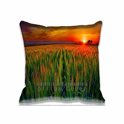 Decor Cotton Throw Pillow Case Grain Field At Sunset Cushion Cover landscape Pillowcases 18x18 Inches (Field Cotton Throw)