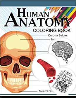 Human Anatomy Coloring Book: Anatomy & Physiology Coloring ...