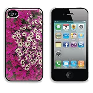 Purple and White Hybrid Daisies Apple iPhone 4 / 4S Snap Cover Case Premium Aluminium Customized Made to Order Support Ready 4 7/16 inch (112mm) x 2 3/8 inch (60mm) x 7/16 inch (11mm) Liil iPhone_4 4S Professional Cases Touch Accessories Graphic Covers Designed Model Folio Sleeve HD Template Wallpaper Photo Jacket Wifi 16gb 32gb 64gb Luxury Protector Wireless Cellphone Cell Phone