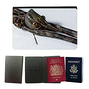 Hot Style PU Leather Travel Passport Wallet Case Cover // M00109475 Stick Insect Ghost Insect Scare Close // Universal passport leather cover